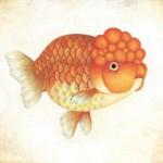 【元祖ブサかわ!?】金魚の魅力にドキンとする作品展 阪神梅田本店で開催