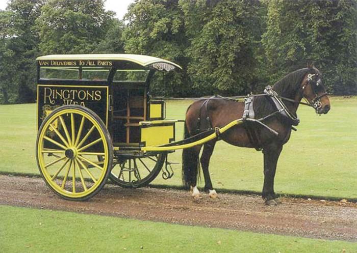 Horse-&-Cart_、「、ソ、・eps