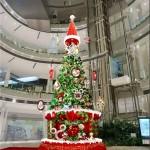 11月、3店舗でクリスマスムードを楽しもう!