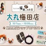 フェリシモ猫部の期間限定ショップが大丸梅田店に登場!