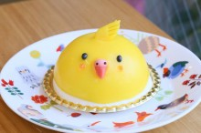 【小鳥ガーデン】ことりカフェケーキ セキセイケーキ
