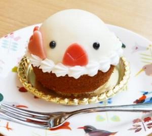 白文鳥ケーキ+ドリンクセット税込1296円-2