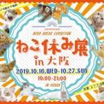 ねこ休み展 in 大阪
