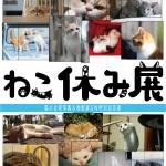 1万人を動員した「ねこ休み展」が大阪に!  SNSの人気猫が集結した合同写真&物販展、GWに開催