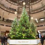 阪急阪神グループのクリスマスイベント情報!!