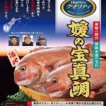 3月25日からHarvesクオリティ<br>「媛の宝(ひめのたから)真鯛」の販売を開始!