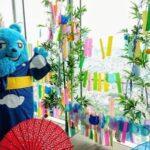 ハルカス300(展望台)開業7周年の七夕は 「7」づくし!<br>「ハルカス七夕祭り2021」